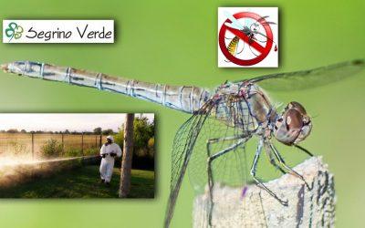 Stop alle Zanzare nel tuo Giardino